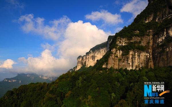 """新华网:""""国际森林日""""重庆84个森林公园 22个湿地公园免费开放"""