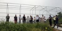 永川区:綦江区农委领导带队考察交流我区宜机化地块整理整治工作 - 农业机械化信息