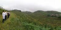 奉节县:县农委到巴南区考察宜机化地块整理整治工作 - 农业机械化信息