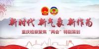 「聚焦两会」重庆检察:打响守护绿水青山的司法保卫战 - 检察
