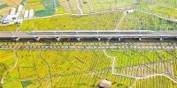 """有重庆""""智造""""加持,渝贵铁路上的列车跑得更稳当! - 重庆晨网"""