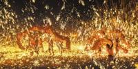 重庆市春节旅游人气持续爆棚 - 重庆新闻网