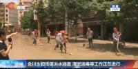 合川太和镇洪水消退 35台大型机械紧急清淤中 - 重庆晨网