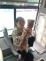女子不听劝阻执意带宠物狗乘车,110民警到场积极妥善处置 - 公安厅