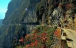 天路、石林、飞瀑……重庆这个神秘小镇风景不输川西! - 重庆晨网