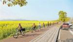 望得见山 看得见水 记得住乡愁 主城将建设60条山城步道 - 重庆晨网