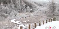 高山雪景 幻如仙境 - 重庆晨网