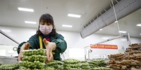 (经济)(1)重庆潼南:全力保障蔬菜供应 - 新华网
