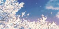 阳春三月,在重庆看一场绝美的梨花雨 - 重庆晨网