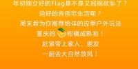 图片 - 重庆晨网