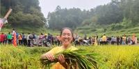 村民正在参加巾帼割稻谷比赛.jpg - 妇联